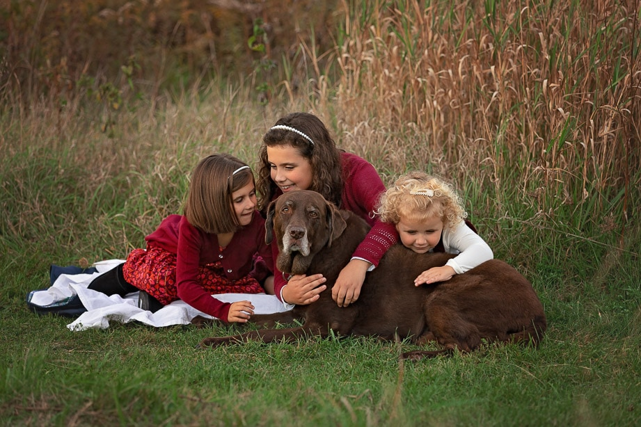 3 girls giving their big brown dog hugs in a tall grass field